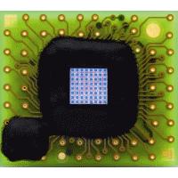 First Sensor 雪崩光电二极管